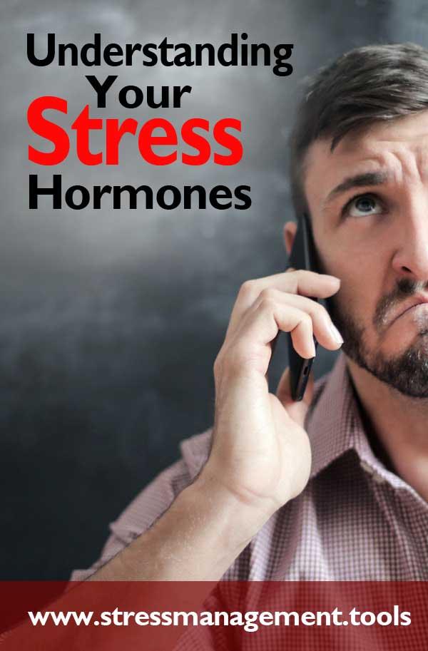 Understanding Your Stress Hormones