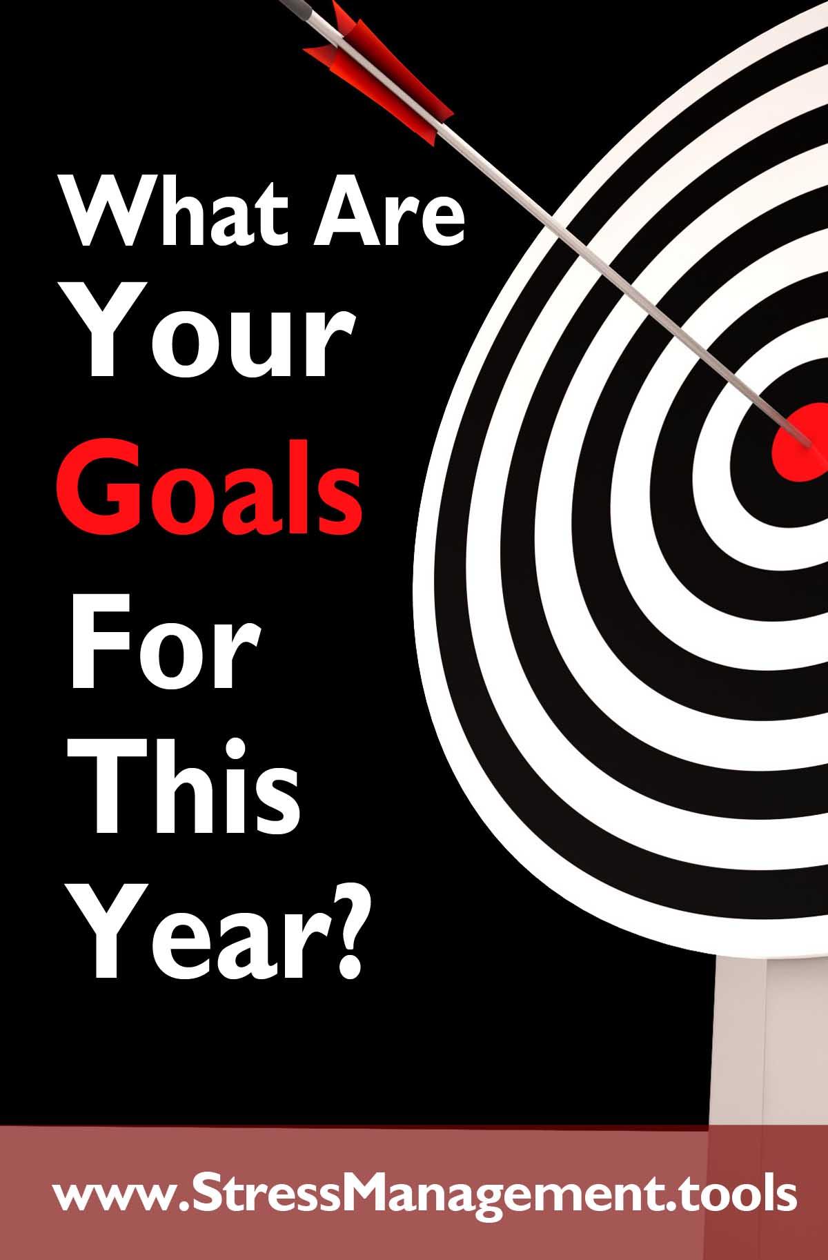 What Are Your Goals For This Year?